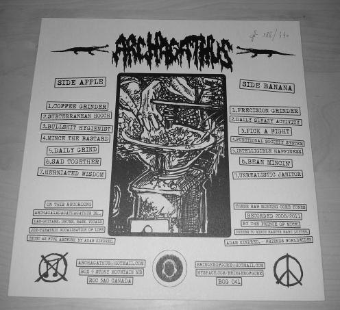 archagatus-LP