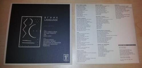 "RUINED FAMILIES ""Blank Language"" LP"