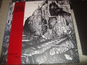 Dirty Wombs / Gutter Split LP